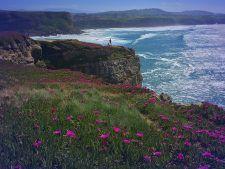 Cantabria es una tierra de montaña y mar