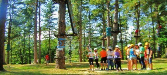 multiactividad con parque de aventuras en bosque centenario