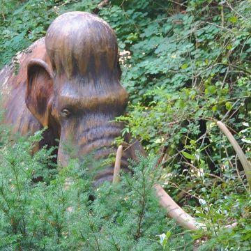 Aprende más sobre la extinción de Mamut