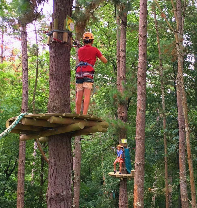 Maravillosos bosques de aventura