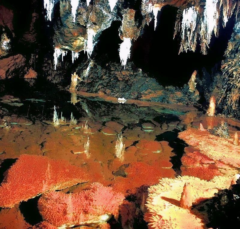 Cuevas durante la excursión
